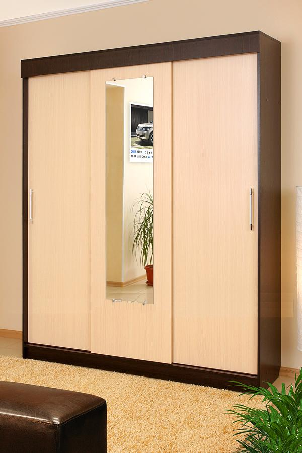 Шкаф-купе холл 3-дверн..